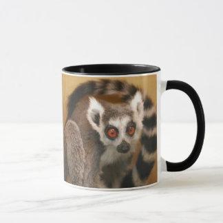 Ring Tailed Lemur 2-panel 2-tone Mug