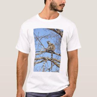 Ring-tailed Lemur (Lemur catta) warming in tree T-Shirt