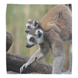 Ring-Tailed Lemur Mother And Baby Bandana