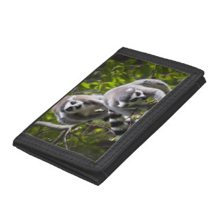 Ring Tailed Lemur Wallet