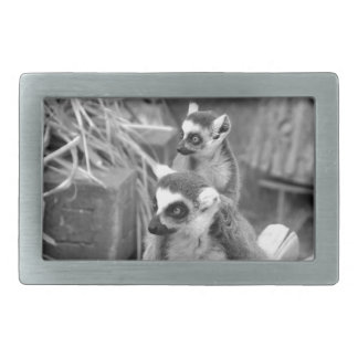 Ring-tailed lemur with baby black and white rectangular belt buckle