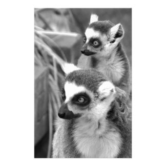 Ring-tailed lemur with baby black and white stationery