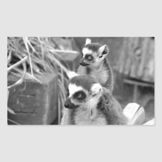 Ring-tailed lemur with baby black and white sticker