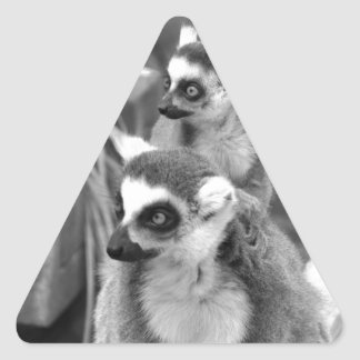 Ring-tailed lemur with baby black and white triangle sticker