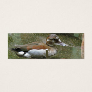 Ringed Teal Duck Bookmark Mini Business Card