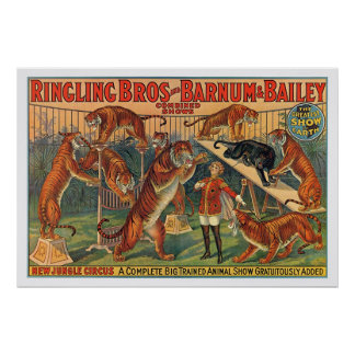 Ringling Brothers Barnum and Bailey Tigers Poster