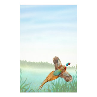 Ringneck Pheasant in Reeds Stationery