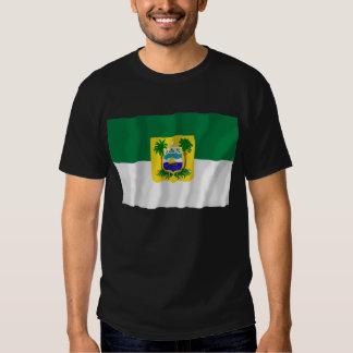 Rio Grande do Norte, Brazil Waving Flag T Shirts