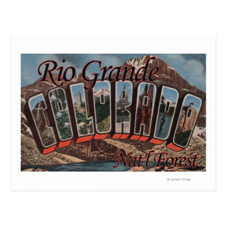 Rio Grande Nat'l Forest, Colorado Postcard