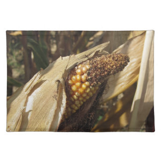 Ripe and ready to harvest ear of corn placemats