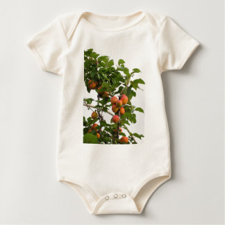 Ripe apricots hanging on the tree . Tuscany, Italy Baby Bodysuit