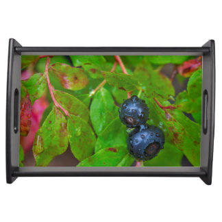 Ripe huckleberries in a light rain serving tray