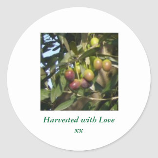Ripe Olives Classic Round Sticker
