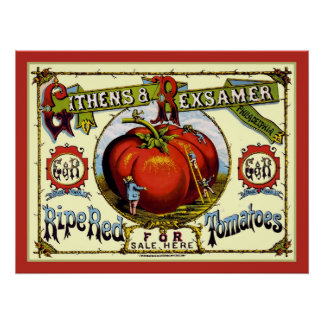 Ripe Red Tomatoes Vintage Advert Print