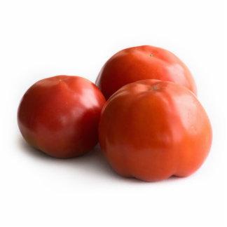 Ripe tomato standing photo sculpture
