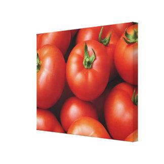 Ripe Tomatoes - Bright Red, Fresh Canvas Print
