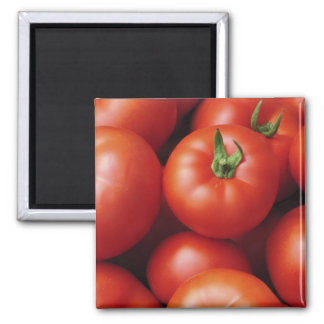 Ripe Tomatoes - Bright Red, Fresh Magnet
