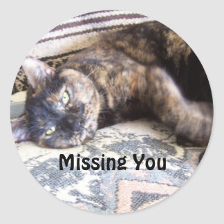 Risa, Missing You Round Sticker