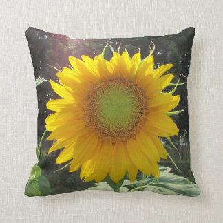 Rise and Shine Honey! Sunflower Season Throw Pillow