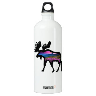 Rise of the Horizon Water Bottle