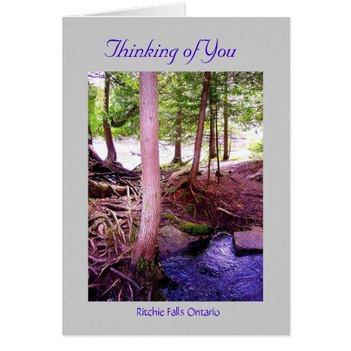 Ritchie Falls photo, Ritchie Falls Ontario, Thi... Card