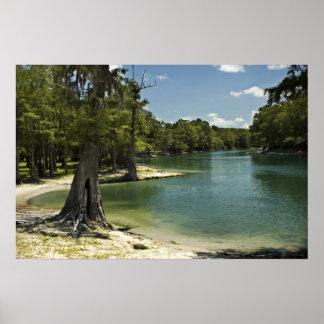 River Beach, Suwannee River, Florida Print