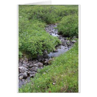 River Card