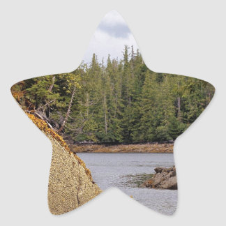 River Channel Temperate Rain Forest Canada Star Sticker