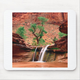 River Coyote Gulch Escalante Canyons Utah Mouse Pad