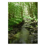 River flowing through woodland. large business cards (Pack of 100)
