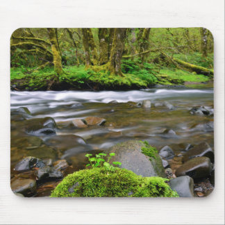 River in green forest, Oregon Mouse Pad