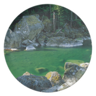 River in North Cascade National Park Plate