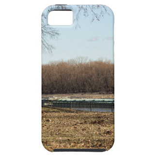 River Life iPhone 5 Cover