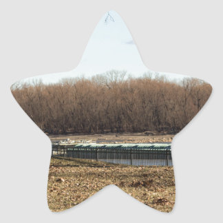 River Life Star Sticker
