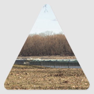 River Life Triangle Sticker