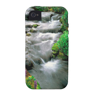 River Mount Adams Yakima Indian Reservation Case-Mate iPhone 4 Cover