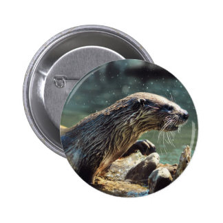 River Otter Animal-lover s Wildlife Photo Buttons