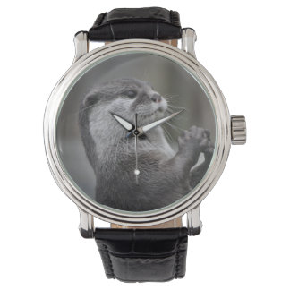 River Otter Watch