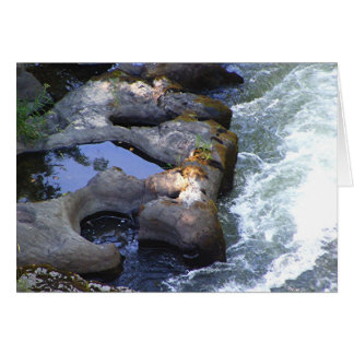 River Pools Card