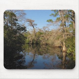 River Reflections Mouse Pad