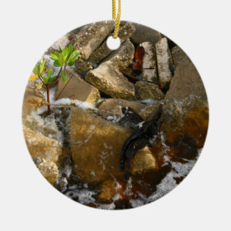 River Rocks Cement Blocks and Mangrove Seedling Ceramic Ornament