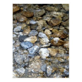 River Stones 2 Postcard