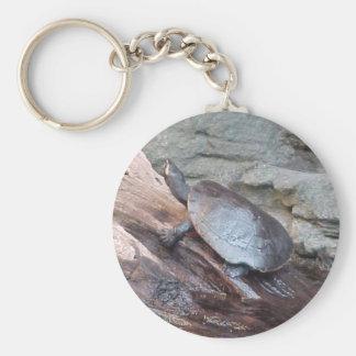 River Turtle Keychain