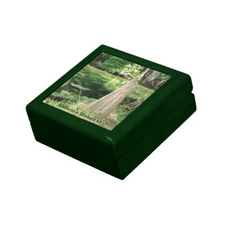 River Watch Trinket Box