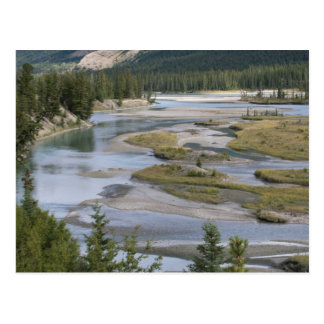 Rivers run through a lowland section of Jasper Postcard