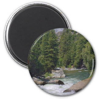 Rivers Streams Trees Forests Magnet