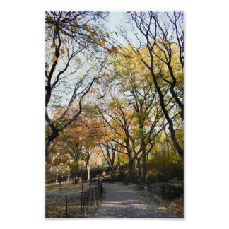 Riverside Park Fall Foliage New York Autumn NYC Poster