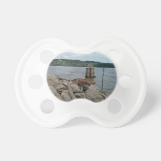 Riverwalk Dubuque Iowa Mississippi River Baby Pacifiers