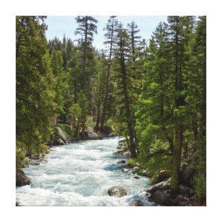 Rivière dans la forêt toiles tendues sur châssis