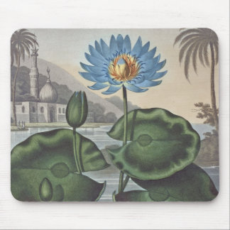RJ Thornton - The Blue Egyptian Water-Lily Mouse Mats